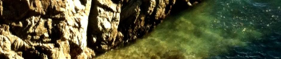 Bodega rocks