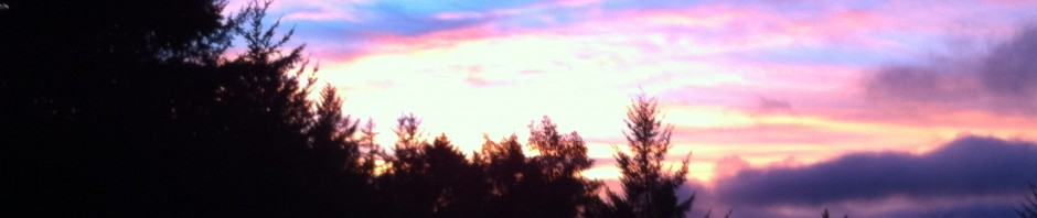 Pink sunset horiz
